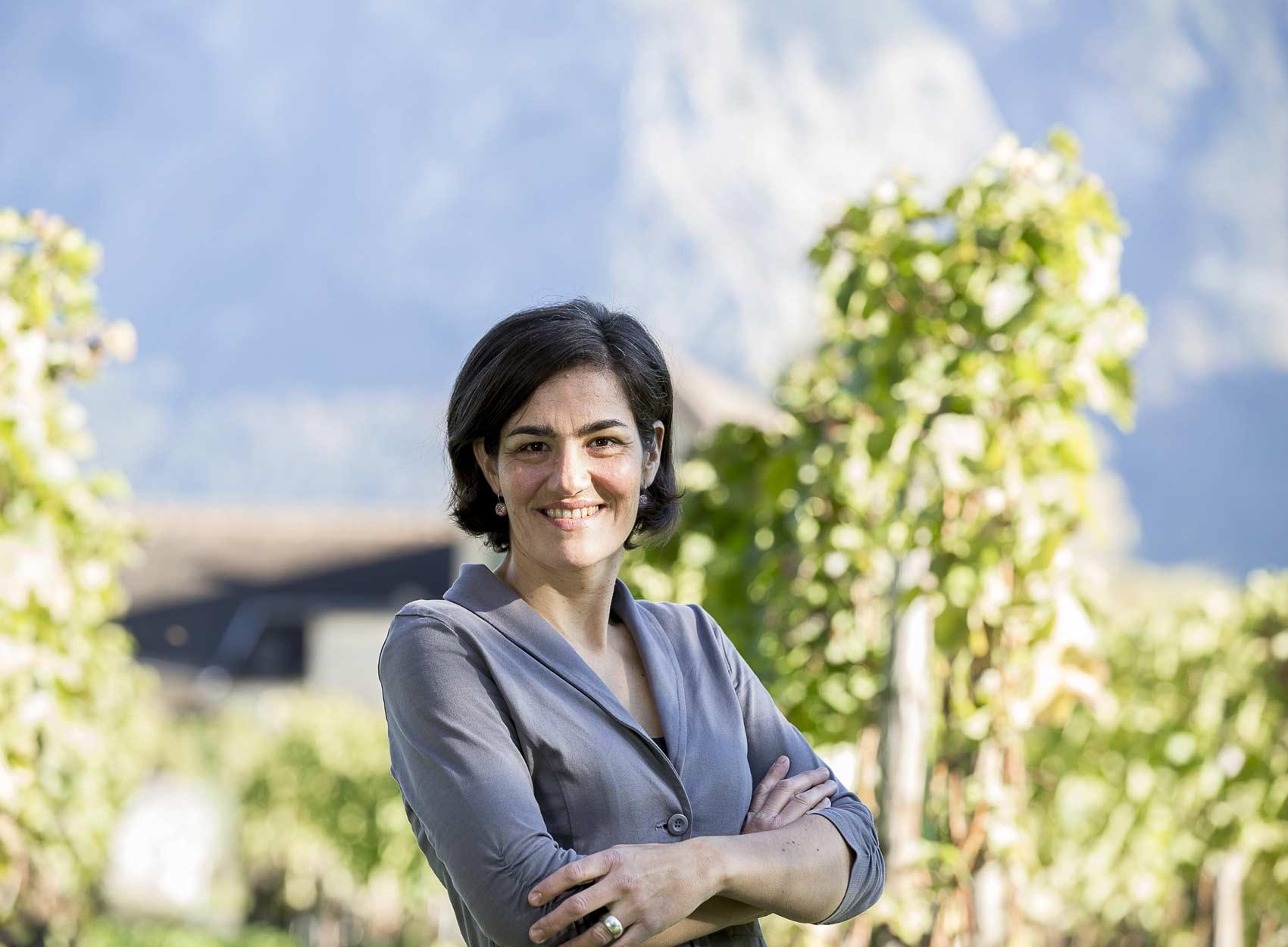 Lipp-Kunz Weingut und Destillerie