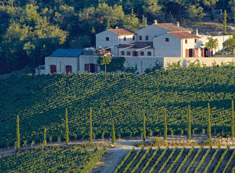Weingut Brancaia